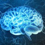 PTSD: le implicazioni neurologiche legate agli eventi traumatici