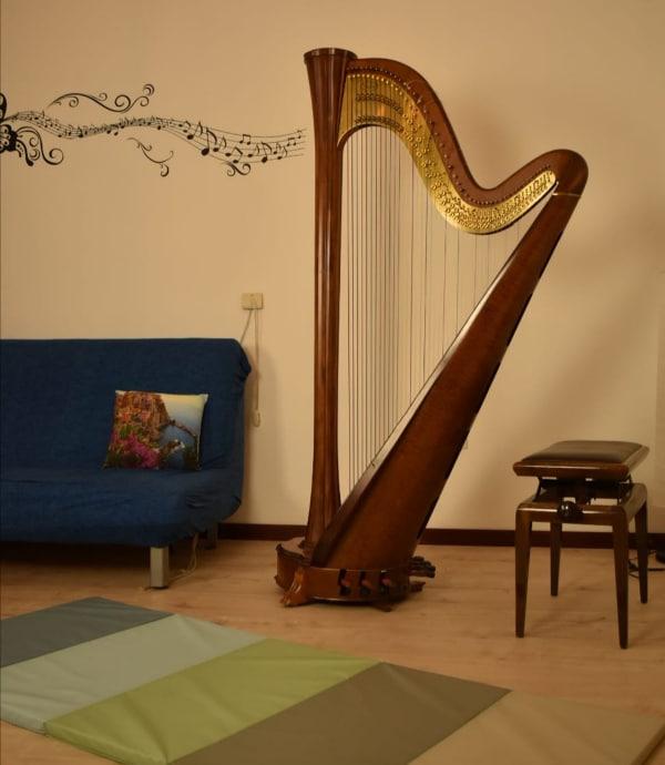 Arpa terapia la musica e il suono come strumenti di cura Psicologia Fig 1