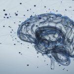 ISRIB: il ruolo del farmaco contro il declino cognitivo - Psicologia