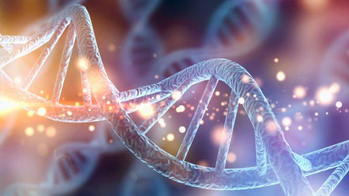Biomarcatori della Pedofilia: può la scienza riconoscere un pedofilo?