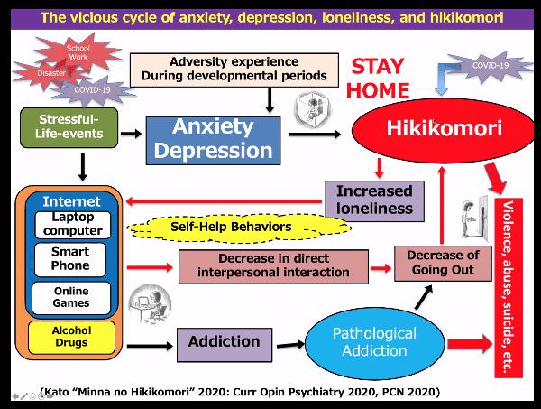 Hikikomori e ritiro sociale assessment e intervento - Report dal webinar imm7