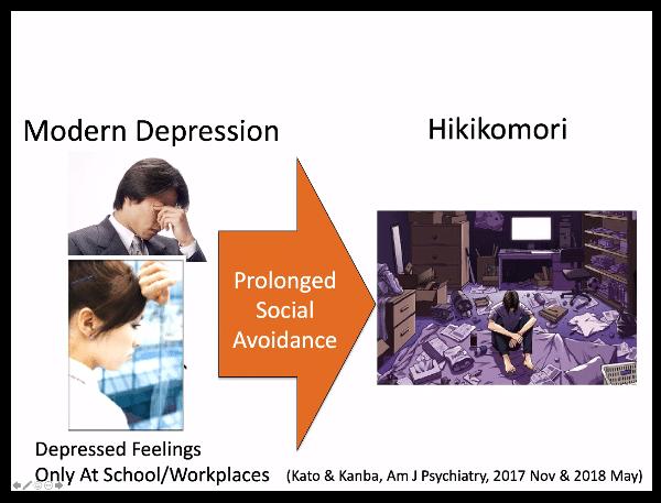 Hikikomori e ritiro sociale assessment e intervento - Report dal webinar imm9