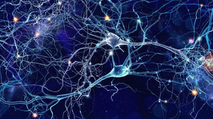Il connettoma: soffio di vita tra phisis e psichè