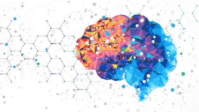 Il controllo cognitivo e la corteccia prefrontale