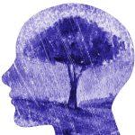 Depressione i meccanismi sottostanti secondo le neuroscienze affettive