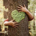 Sostenibilità ambientale: verso un paradigma psicologico ecosostenibile