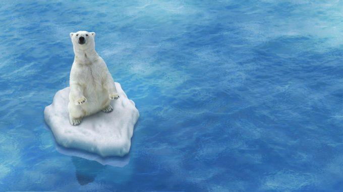 """""""Ecofenotipo"""" climatico: quanto è influenzata la nostra salute mentale dai cambiamenti climatici?"""